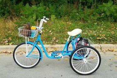 Custom built 70's 3-wheeler